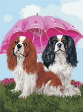 Щенки под зонтом