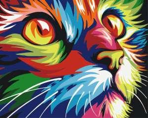 Радужный кот